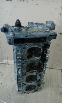 Головка блока цилиндров двигателя (ГБЦ) Mercedes W210 (E) Артикул 50648373 - Фото #1