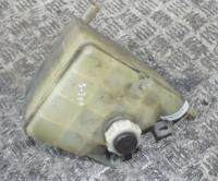 Пробка расширительного бачка Renault Laguna I (1993-2000) Артикул 900096309 - Фото #1